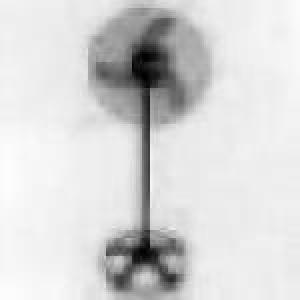 Ventilador pedestal industrial